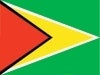 guyana south america flags